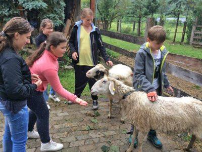 Monis kleine Farm – Klasse 4