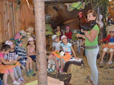 Besuch bei Monis kleiner Farm – 1. Klasse