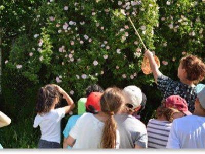 """Naturerlebnistag der zweiten Klasse im Heidehaus der Fröttmaninger Heide zum Thema """"Hecke"""""""