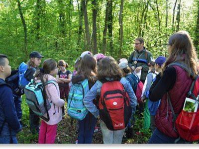 Die 3. Klasse beim Münchner Walderlebnistag