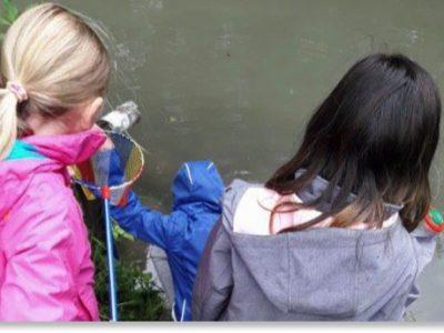 Auf der Suche nach Kleinstlebewesen im Schleißheimer Kanal